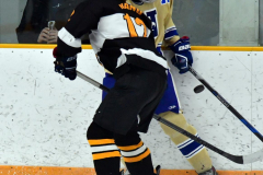 CIAC Ice Hockey; Newtown 2 vs. Daniel Hand 6 - Photo # 703