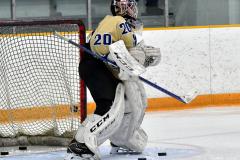 CIAC Ice Hockey; Focused on Newtown 7 vs. Mt. Everett 1 - Photo 145