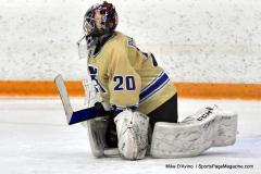CIAC Ice Hockey; Focused on Newtown 7 vs. Mt. Everett 1 - Photo 832