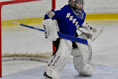 CIAC Ice Hockey; L.H.- H-K, Cogin. 8 vs Newtown 1 - Photo # (115)