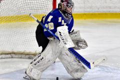 CIAC Ice Hockey; L.H.- H-K, Cogin. 8 vs Newtown 1 - Photo # (120)
