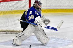 CIAC Ice Hockey; L.H.- H-K, Cogin. 8 vs Newtown 1 - Photo # (121)