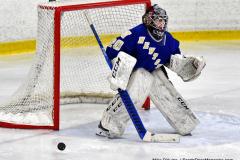 CIAC Ice Hockey; L.H.- H-K, Cogin. 8 vs Newtown 1 - Photo # (128)