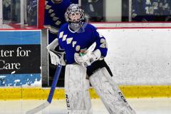 CIAC Ice Hockey; L.H.- H-K, Cogin. 8 vs Newtown 1 - Photo # (13)