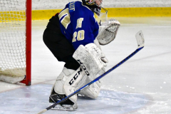 CIAC Ice Hockey; L.H.- H-K, Cogin. 8 vs Newtown 1 - Photo # (130)