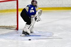 CIAC Ice Hockey; L.H.- H-K, Cogin. 8 vs Newtown 1 - Photo # (131)