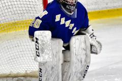 CIAC Ice Hockey; L.H.- H-K, Cogin. 8 vs Newtown 1 - Photo # (133)