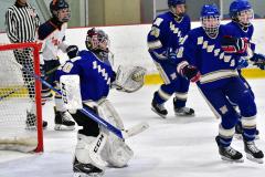 CIAC Ice Hockey; L.H.- H-K, Cogin. 8 vs Newtown 1 - Photo # (342)