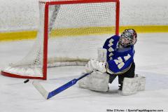 CIAC Ice Hockey; L.H.- H-K, Cogin. 8 vs Newtown 1 - Photo # (403)