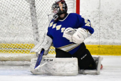 CIAC Ice Hockey; L.H.- H-K, Cogin. 8 vs Newtown 1 - Photo # (788)