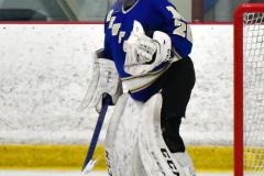 CIAC Ice Hockey; L.H.- H-K, Cogin. 8 vs Newtown 1 - Photo # (919)