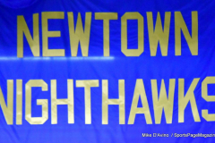 CIAC Ice Hockey; Newtown 2 vs. Daniel Hand 6 - Photo # 003