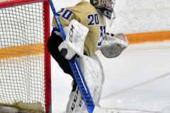 CIAC Ice Hockey; Newtown 2 vs. Daniel Hand 6 - Photo # 109