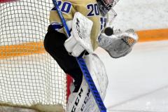 CIAC Ice Hockey; Newtown 2 vs. Daniel Hand 6 - Photo # 115