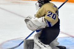 CIAC Ice Hockey; Newtown 2 vs. Daniel Hand 6 - Photo # 1189