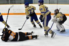 CIAC Ice Hockey; Newtown 2 vs. Daniel Hand 6 - Photo # 1196