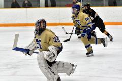 CIAC Ice Hockey; Newtown 2 vs. Daniel Hand 6 - Photo # 1204