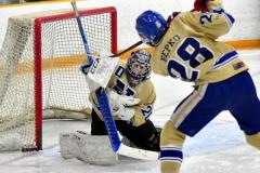 CIAC Ice Hockey; Newtown 2 vs. Daniel Hand 6 - Photo # 197