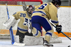 CIAC Ice Hockey; Newtown 2 vs. Daniel Hand 6 - Photo # 783