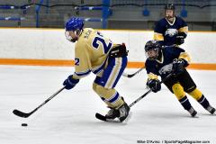 CIAC Ice Hockey; Focused on Newtown 7 vs. Mt. Everett 1 - Photo 446