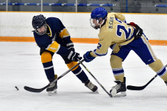 CIAC Ice Hockey; Focused on Newtown 7 vs. Mt. Everett 1 - Photo 447