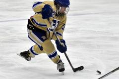 CIAC Ice Hockey; Focused on Newtown 7 vs. Mt. Everett 1 - Photo 769