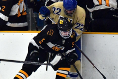 CIAC Ice Hockey; Newtown 2 vs. Daniel Hand 6 - Photo # 1107