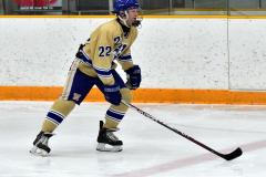 CIAC Ice Hockey; Newtown 2 vs. Daniel Hand 6 - Photo # 1241