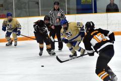 CIAC Ice Hockey; Newtown 2 vs. Daniel Hand 6 - Photo # 1477