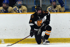 CIAC Ice Hockey; Newtown 2 vs. Daniel Hand 6 - Photo # 1881