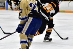CIAC Ice Hockey; Newtown 2 vs. Daniel Hand 6 - Photo # 1915