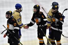 CIAC Ice Hockey; Newtown 2 vs. Daniel Hand 6 - Photo # 2013
