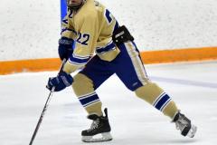 CIAC Ice Hockey; Newtown 2 vs. Daniel Hand 6 - Photo # 314