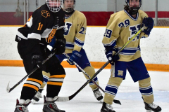 CIAC Ice Hockey; Newtown 2 vs. Daniel Hand 6 - Photo # 848