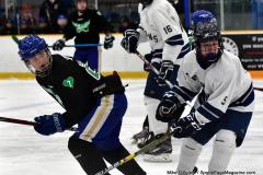CIAC Ice Hockey; Newtown 4 vs. SH,LI,TH,NO 1 - Photo # (1108)