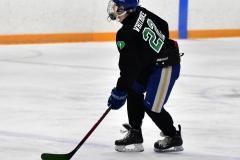 CIAC Ice Hockey; Newtown 4 vs. SH,LI,TH,NO 1 - Photo # (1204)