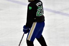 CIAC Ice Hockey; Newtown 4 vs. SH,LI,TH,NO 1 - Photo # (1291)