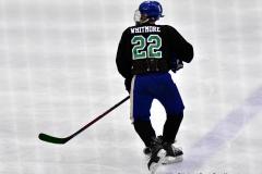 CIAC Ice Hockey; Newtown 4 vs. SH,LI,TH,NO 1 - Photo # (1297)