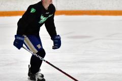 CIAC Ice Hockey; Newtown 4 vs. SH,LI,TH,NO 1 - Photo # (235)