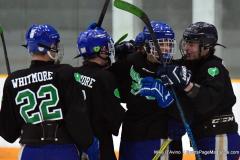 CIAC Ice Hockey; Newtown 4 vs. SH,LI,TH,NO 1 - Photo # (452)