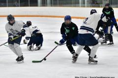 CIAC Ice Hockey; Newtown 4 vs. SH,LI,TH,NO 1 - Photo # (470)