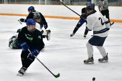 CIAC Ice Hockey; Newtown 4 vs. SH,LI,TH,NO 1 - Photo # (472)