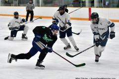 CIAC Ice Hockey; Newtown 4 vs. SH,LI,TH,NO 1 - Photo # (473)