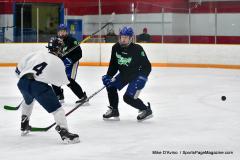 CIAC Ice Hockey; Newtown 4 vs. SH,LI,TH,NO 1 - Photo # (529)