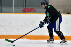 CIAC Ice Hockey; Newtown 4 vs. SH,LI,TH,NO 1 - Photo # (55)