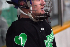 CIAC Ice Hockey; Newtown 4 vs. SH,LI,TH,NO 1 - Photo # (553)