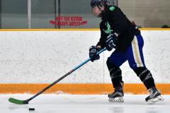 CIAC Ice Hockey; Newtown 4 vs. SH,LI,TH,NO 1 - Photo # (56)