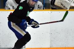 CIAC Ice Hockey; Newtown 4 vs. SH,LI,TH,NO 1 - Photo # (681)
