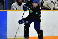 CIAC Ice Hockey; Newtown 4 vs. SH,LI,TH,NO 1 - Photo # (683)