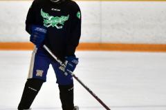 CIAC Ice Hockey; Newtown 4 vs. SH,LI,TH,NO 1 - Photo # (762)